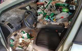 Откуда появляются неприятные автомобильные запахи